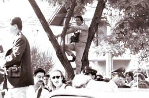 Juan Herrera fotógrafo de Fortín Mapocho , reportea desde un arbol.